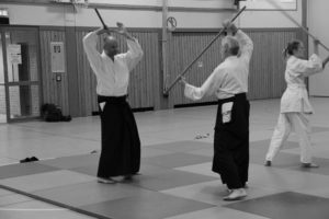 Aikido Everswinkel 60