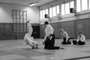 Aikido Everswinkel 80