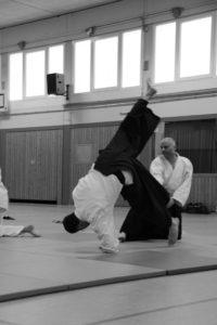 Aikido Everswinkel 81